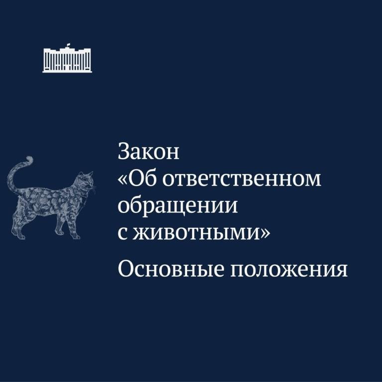 О новом законе об ответственном обращении с животными